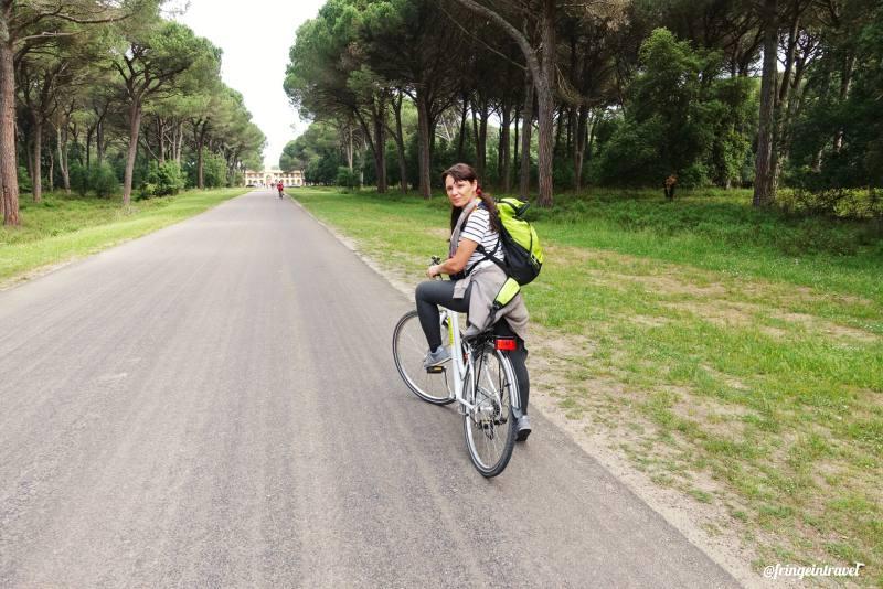 Parco San Rossore