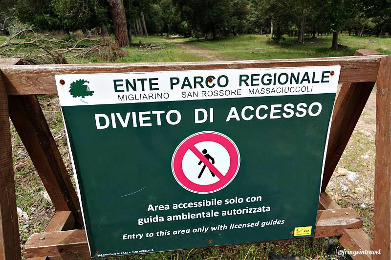 Parco di San Rossore Massaciuccoli1