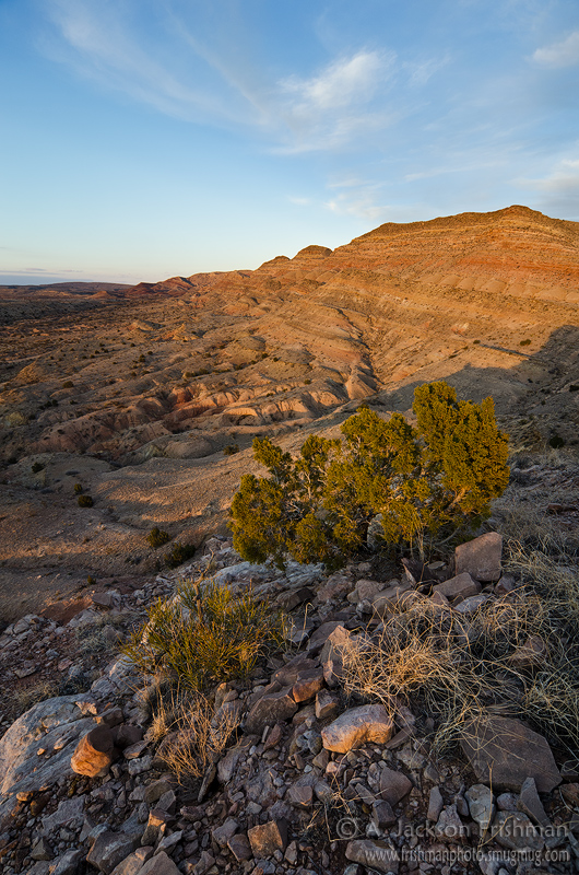 Golden sunset in the Sierra de las Cañas Wilderness Study Area, eastern Socorro County, New Mexico