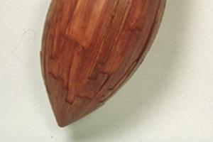 Orapendula