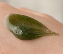 innisfree capsule recipe pack aux algues