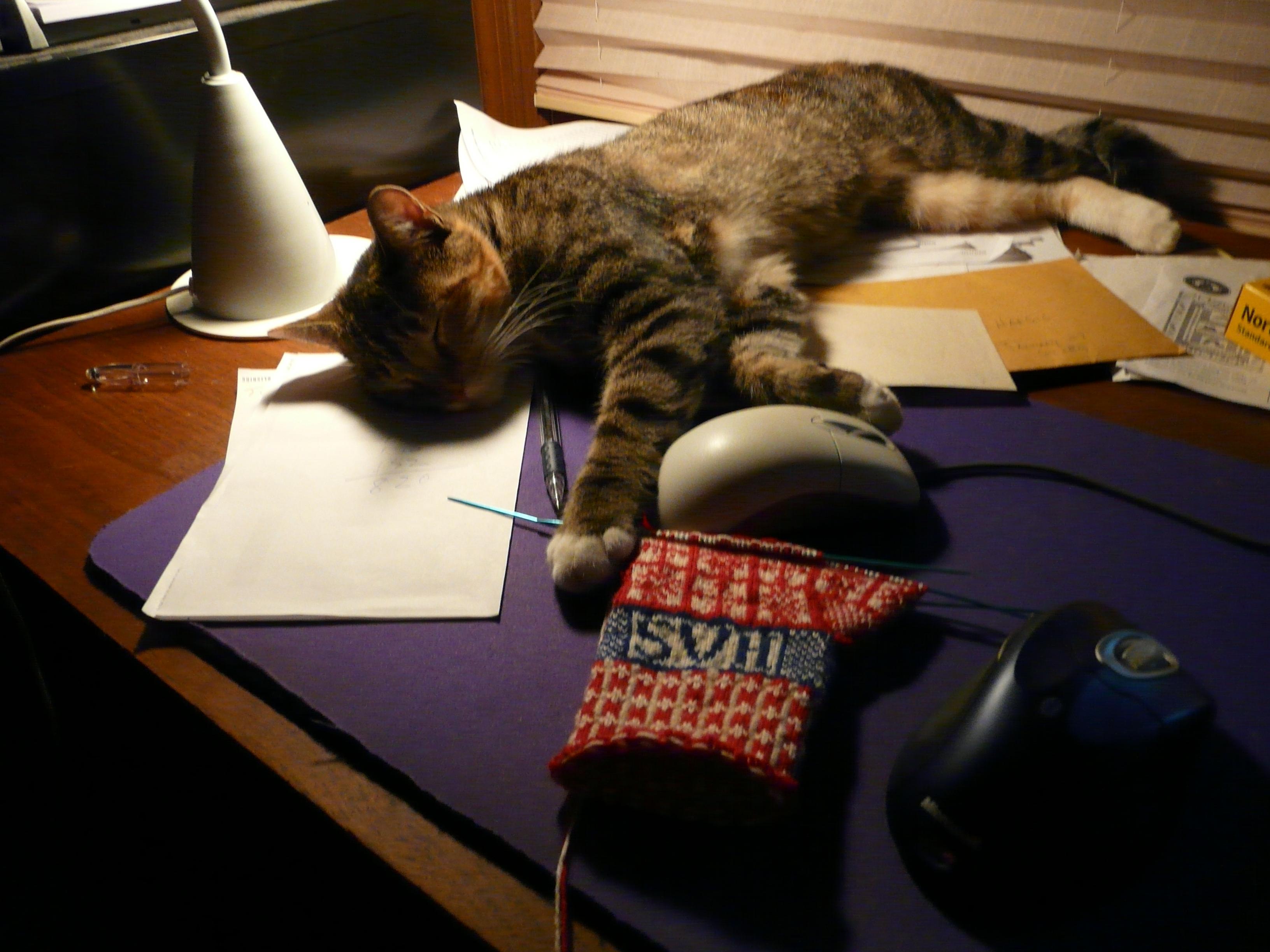 Maude helping