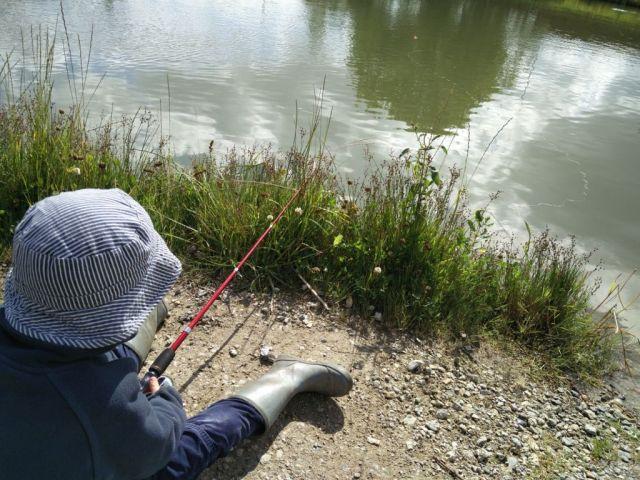 fisketur, dreng-med-fiskestang