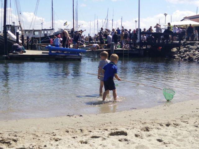 roervig-havn, sommer, sommer-i-danmark