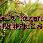 """吉幾三の""""tsugaru""""の歌詞の翻訳はこちら!"""