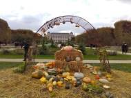 fall seasonal display at Jardin des Plantes in Paris