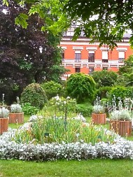 Iris garden Jardin des Plantes Paris