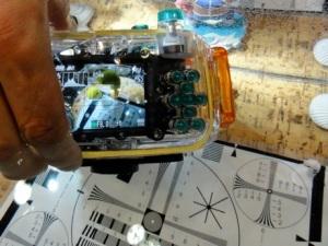 INON水中マイクロ魚眼レンズの写り方