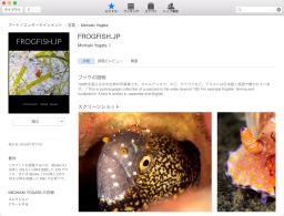 iBooks Storeの表示例