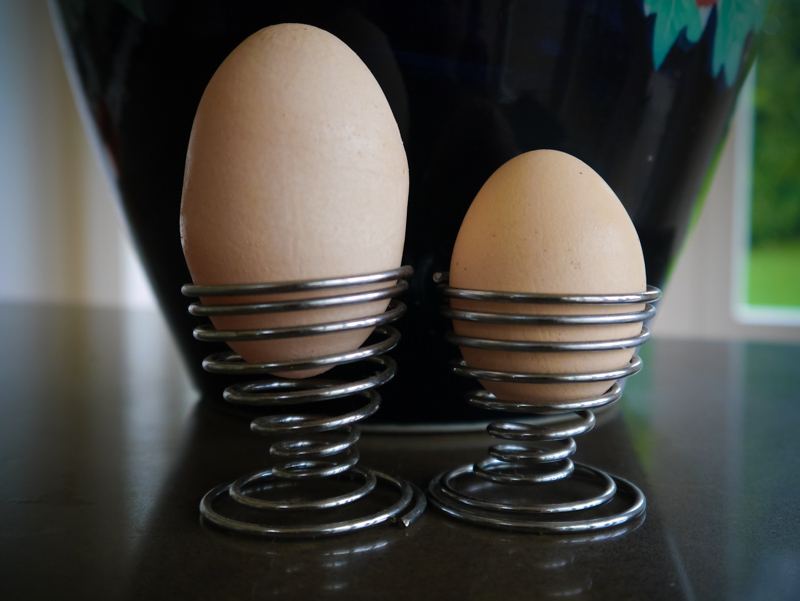 Now this is what you call an EGG