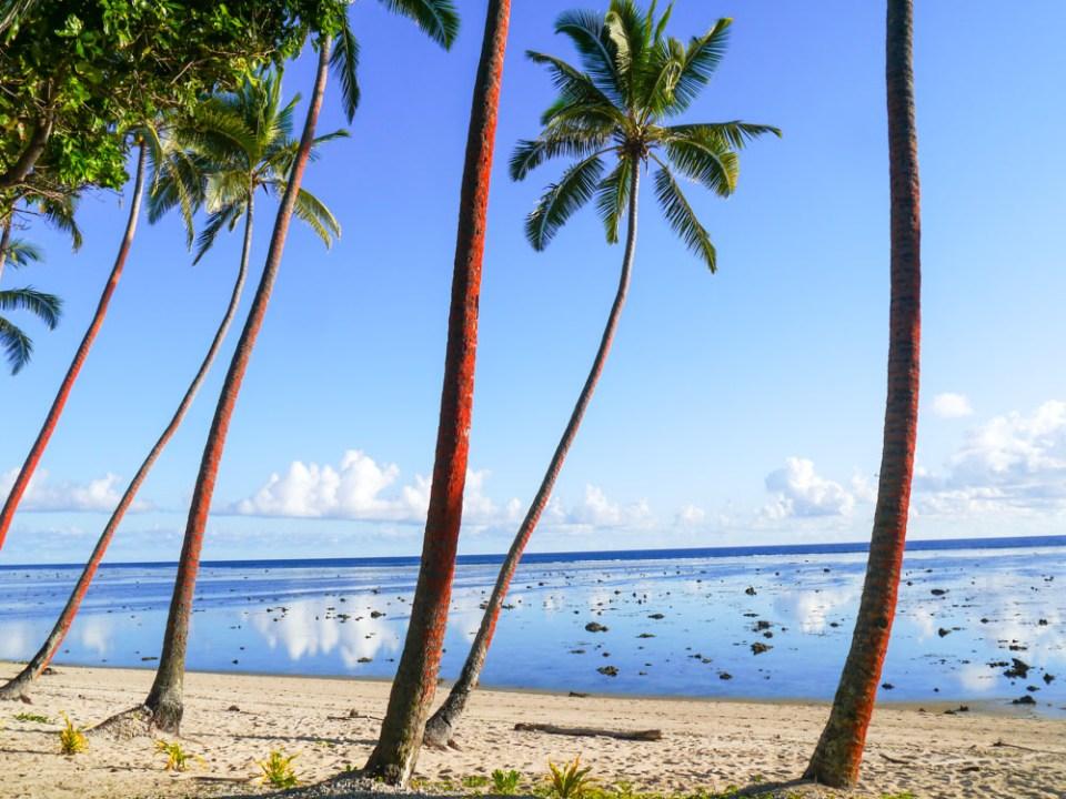 Fiji-1050021
