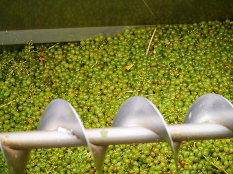 Harvester bins-1060247