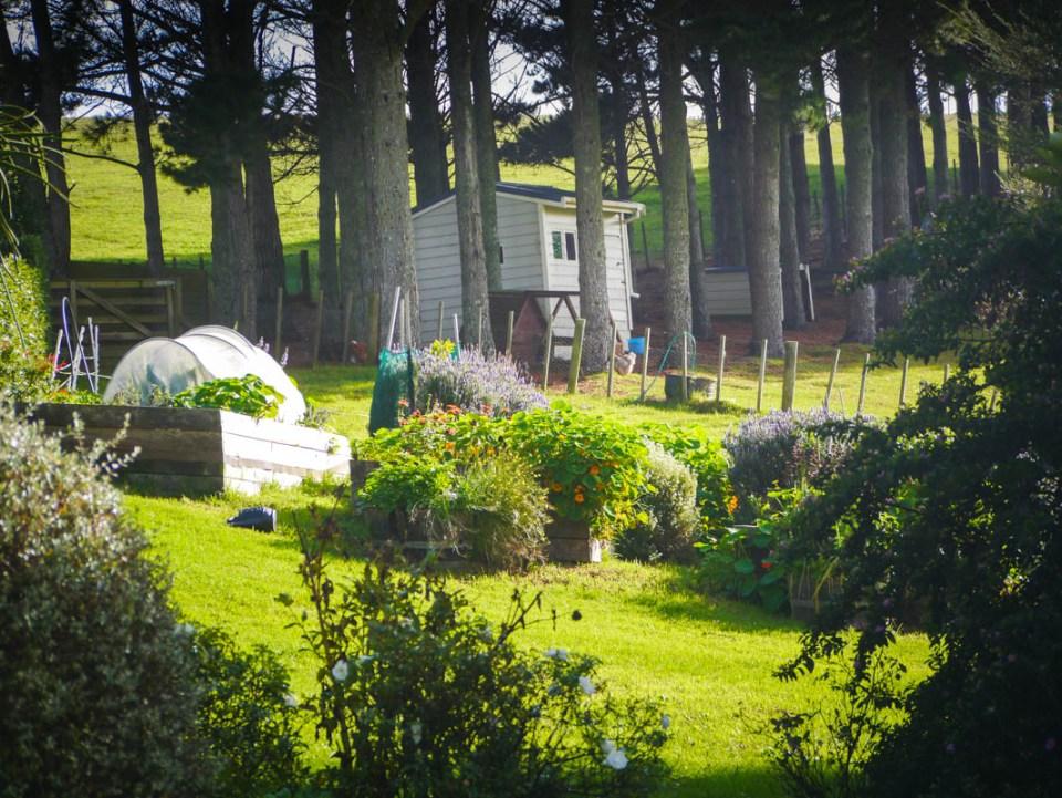 garden-1060740