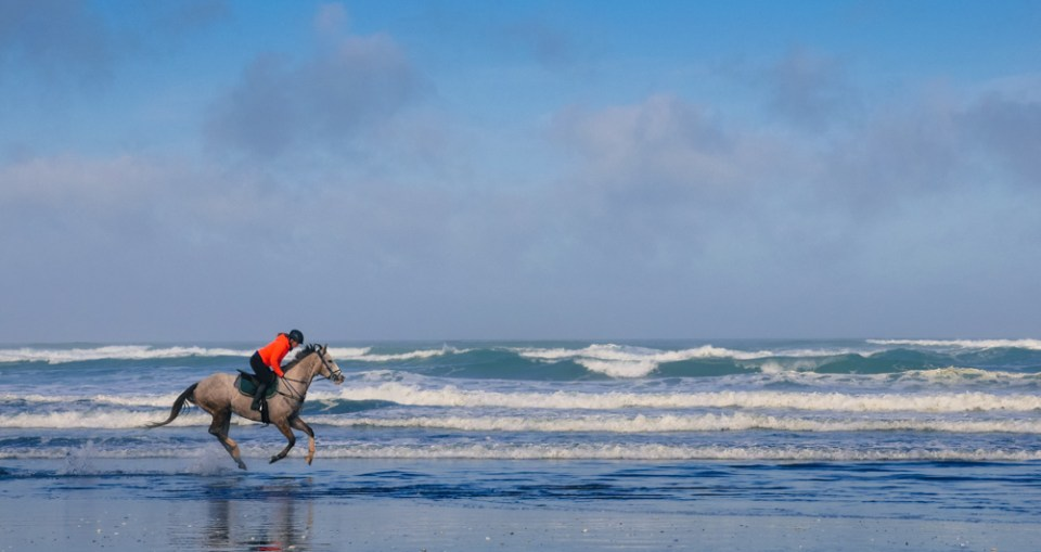 horse-riding-at-muriwai-1160084