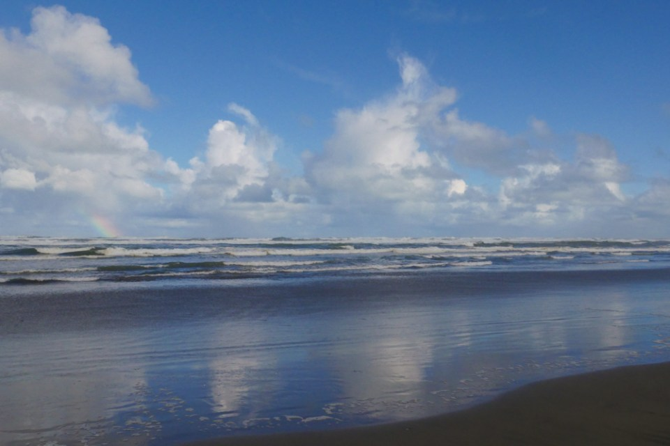 muriwai-reflection-1160421