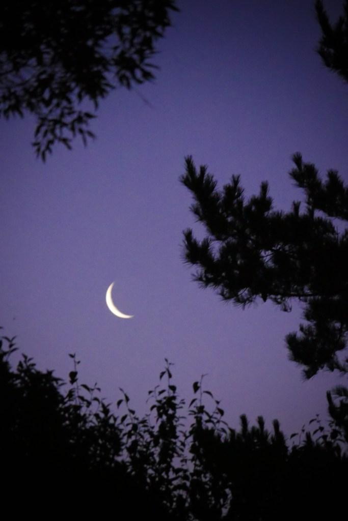 moon-1220670
