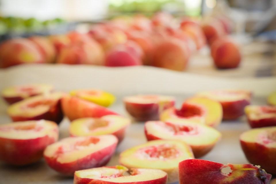 peaches-1220651