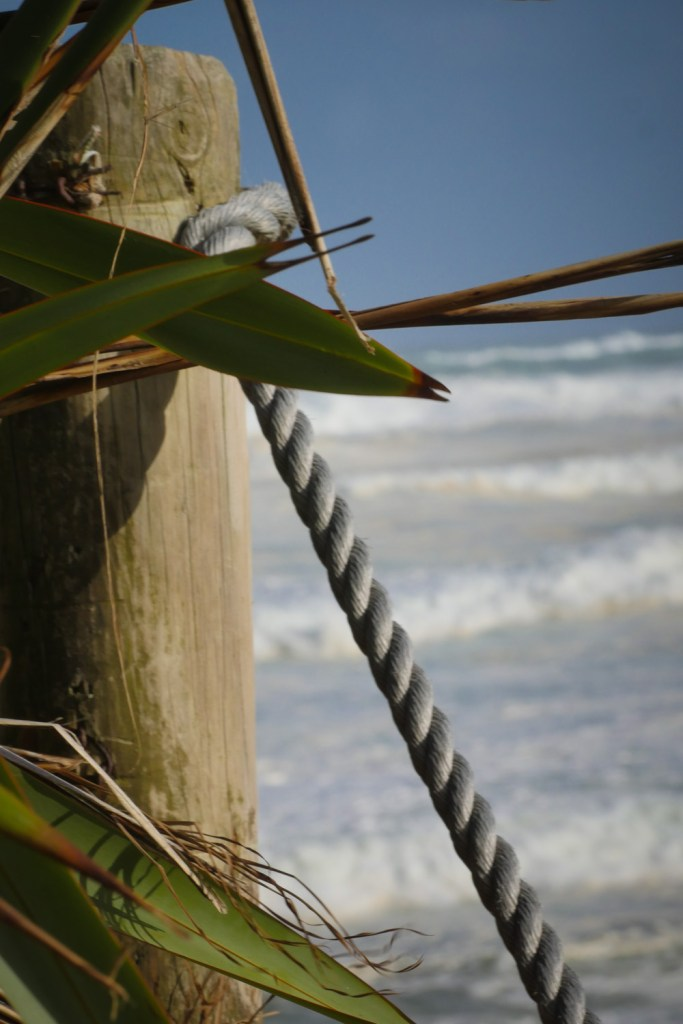 fence at muriwai-1250216