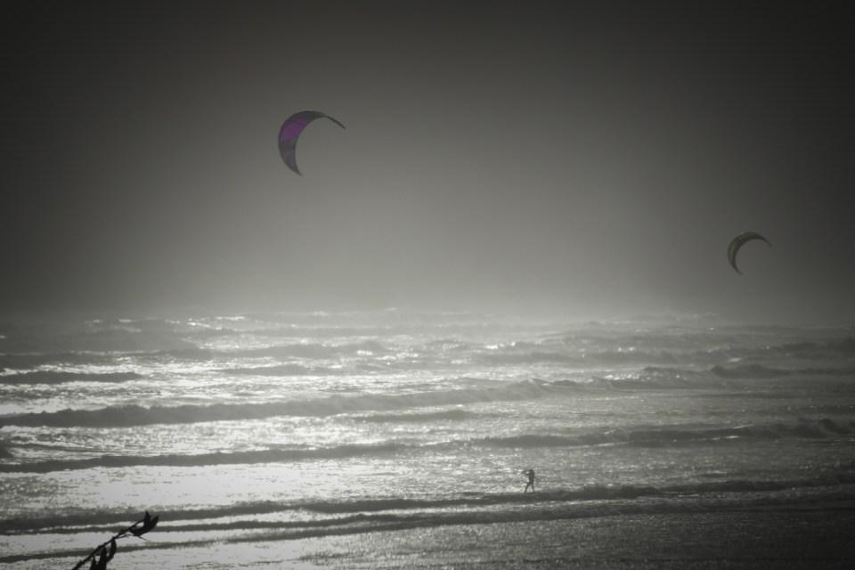 purple kite