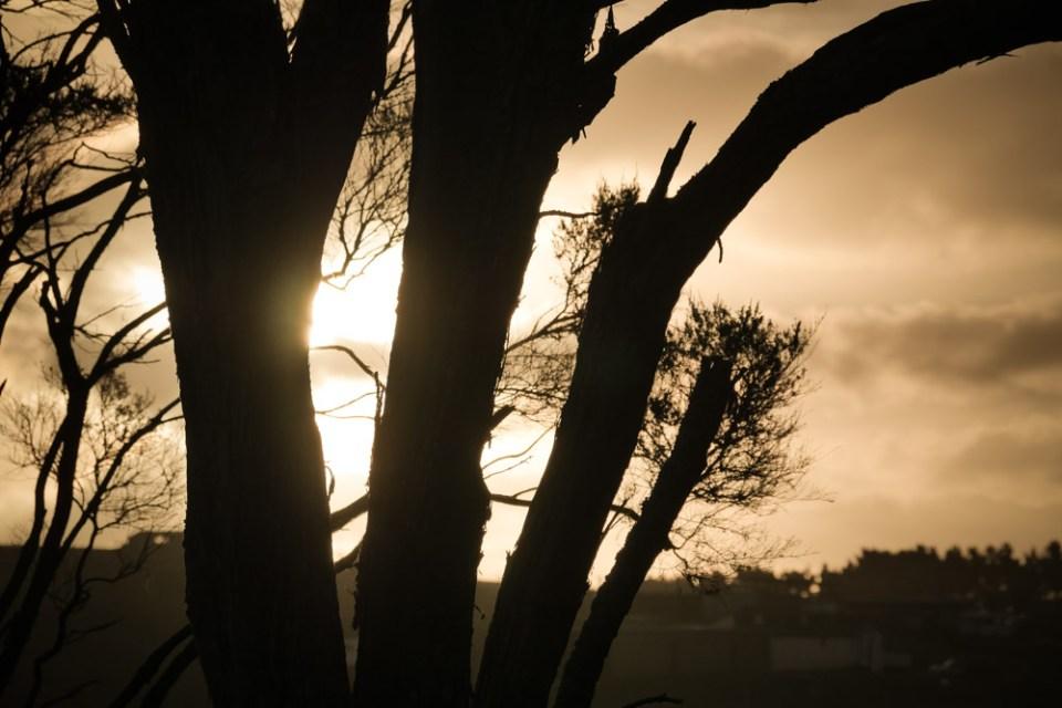 twilight-1290356