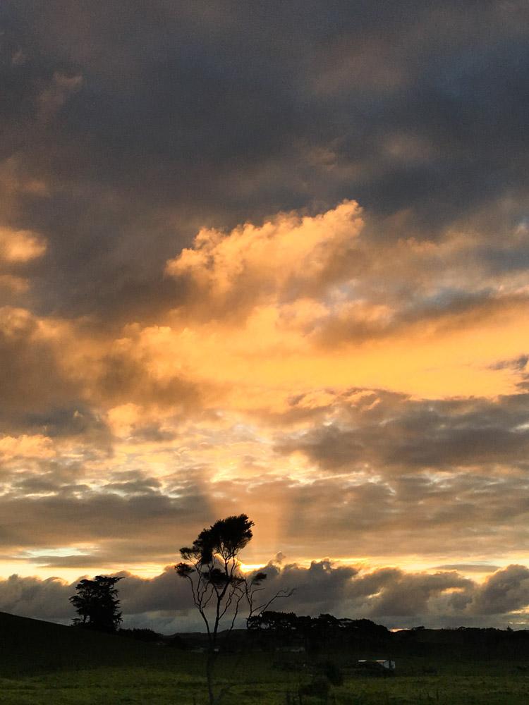 beautiful sunset waimauku
