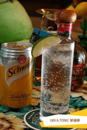 Gin & Tonic 琴通寧1