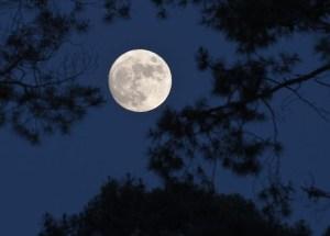 Луна и очистительный процесс нашего тела.
