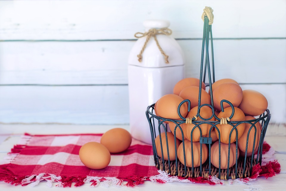 Ach du dickes Ei – Eier richtig lagern