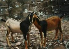 195502-10142364-Mirrored_goats_JPG