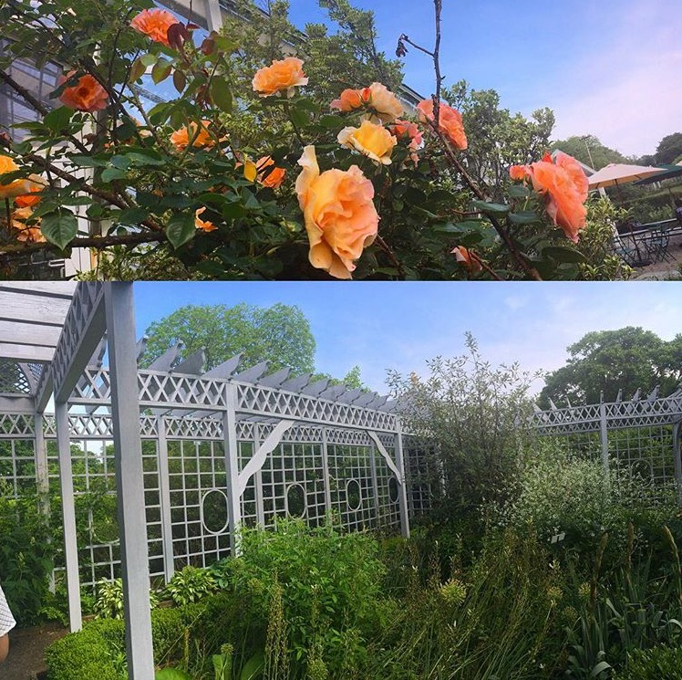 Staten Island, NY: Visiting Snug Harbor Cultural Center and Botanical Garden