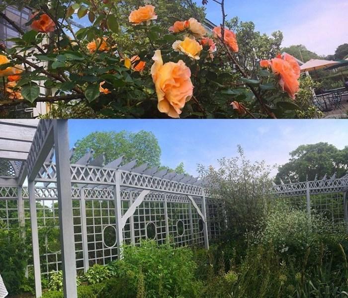 Staten Island, NY: Snug Harbor Cultural Center and Botanical Garden