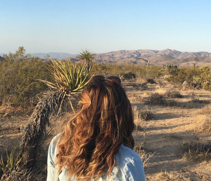 Twentynine Palms, California: Joshua Tree National Park