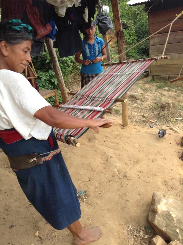 Weaver in Pantelho