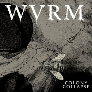 Album Review | WVRM | Colony Collapse