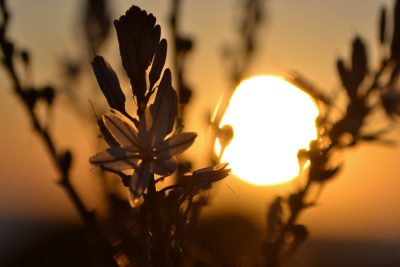 Coucher de soleil Haute Corse