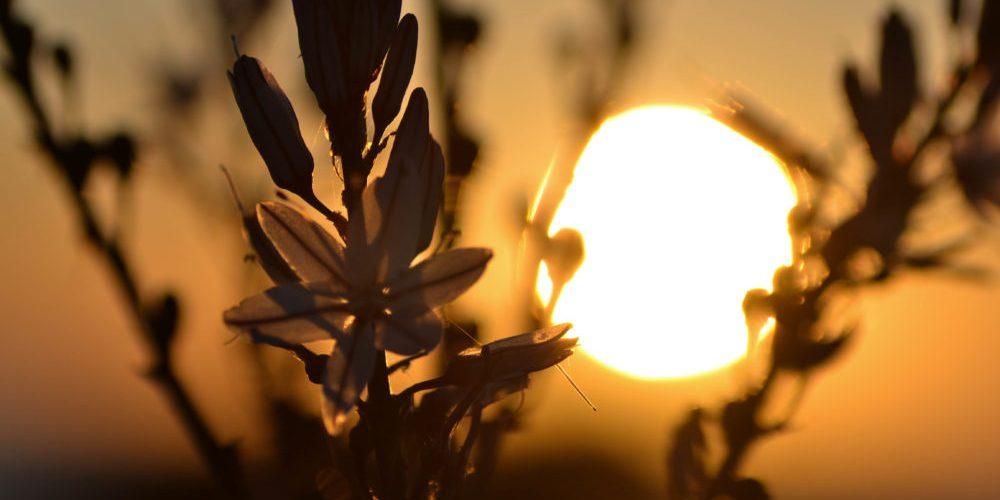Coucher-de-soleil-Haute-Corse-e1488382108684