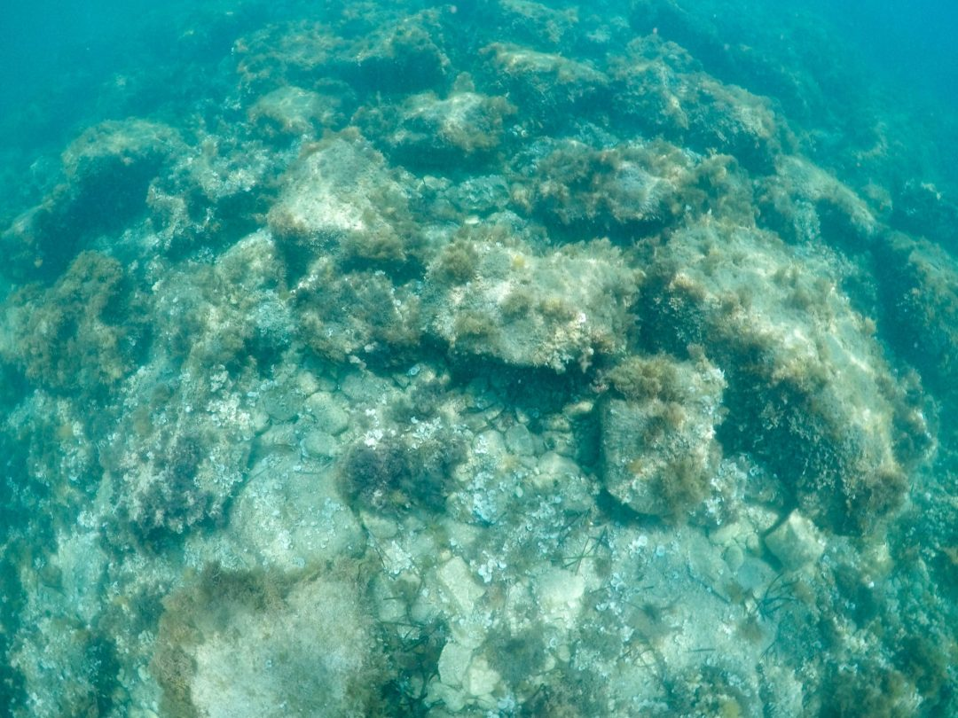 fonds marins cap-dantibes