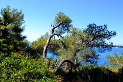 Îles de Lérins sainte marguerite14