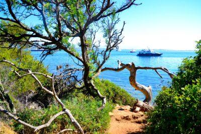 Îles de Lérins sainte marguerite8