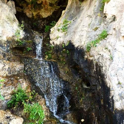 fontaine-jardin-exotique-eze-cote-dazur