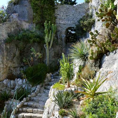 jardin-exotique-eze-cote-dazur