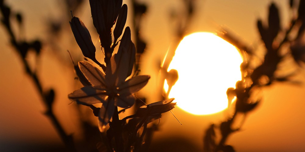 sunset-corsica-galeria
