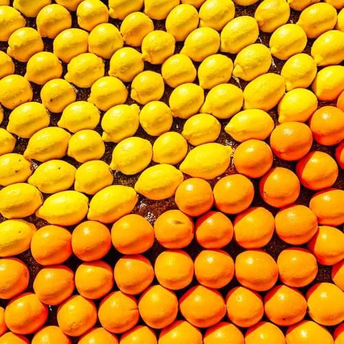 86-fete-du-citron-menton-imaginaires