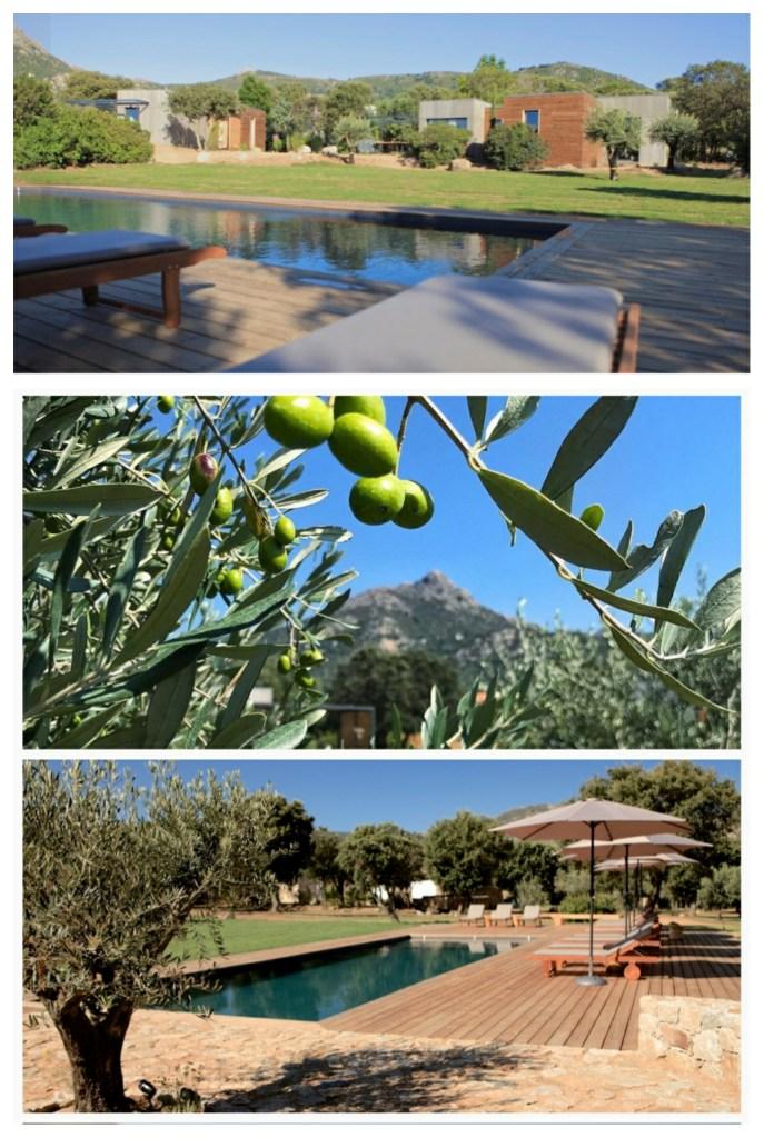 Hébergements familiaux en Corse : Casa Legna Ecolodge à Ile rousse. Hébergement insolite en Balagne