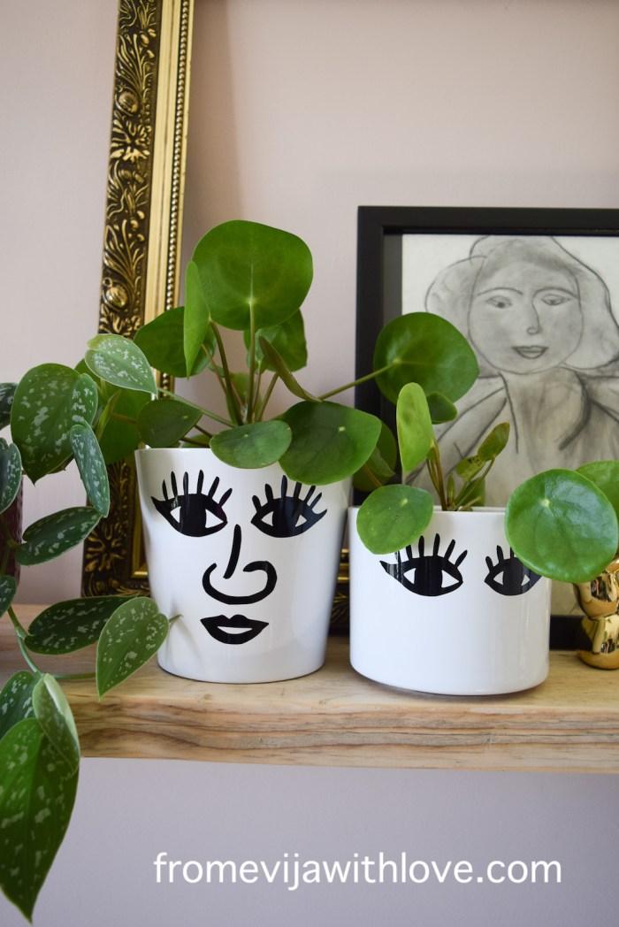 shelves with DIY plant pots