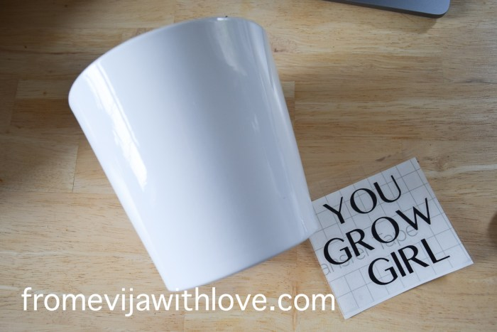 plant pot and you go girl text