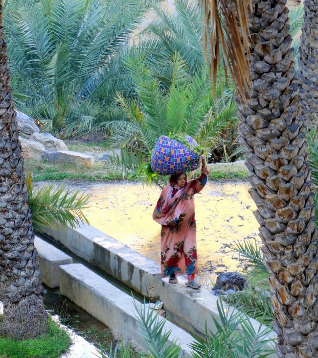 Misfat al Abryeen Oman