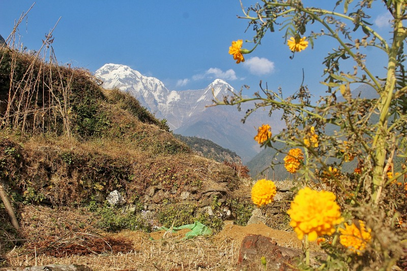 Annapurna Base Camp24
