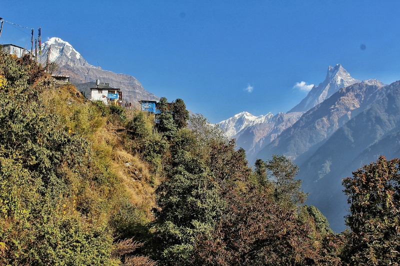 Annapurna Base Camp4