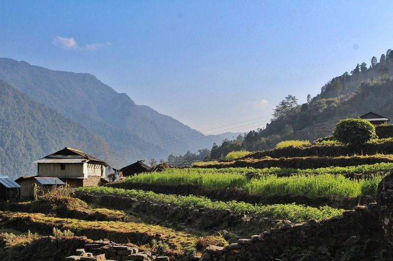 Annapurna Base Campl Nepal Hike
